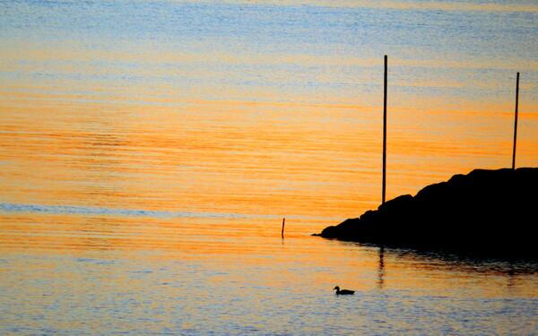 【彩】早朝の海