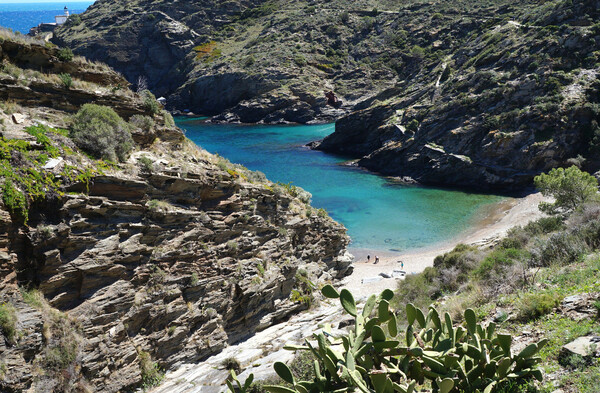 持つべきものは、地中海2