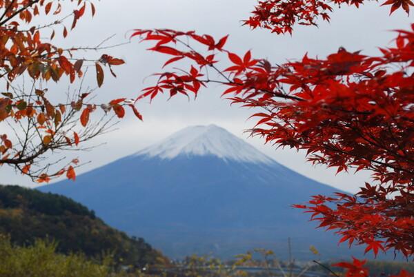 【秋】富士山
