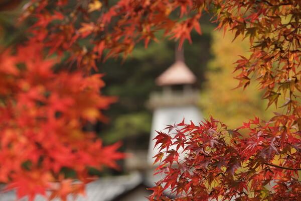 秋の鐘・鳴りて