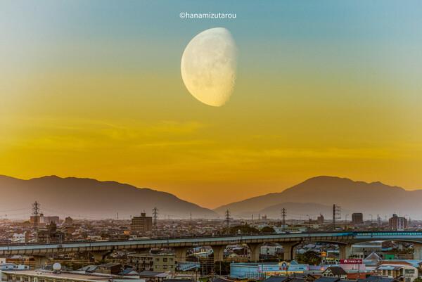 【続・夏】月を見る