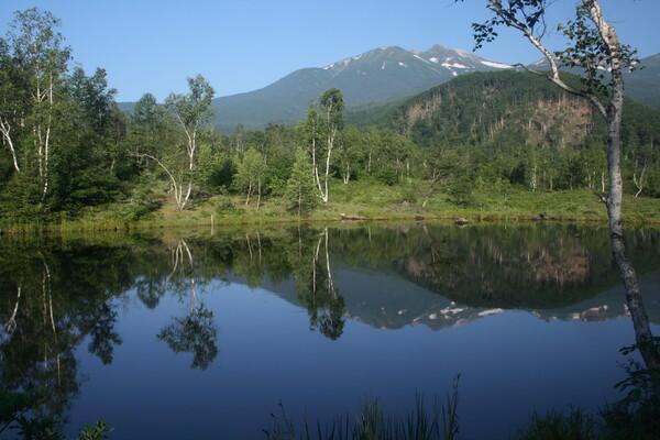 まいめの池 の静寂