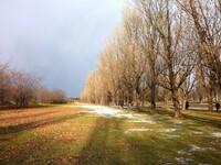 秋 冬 2
