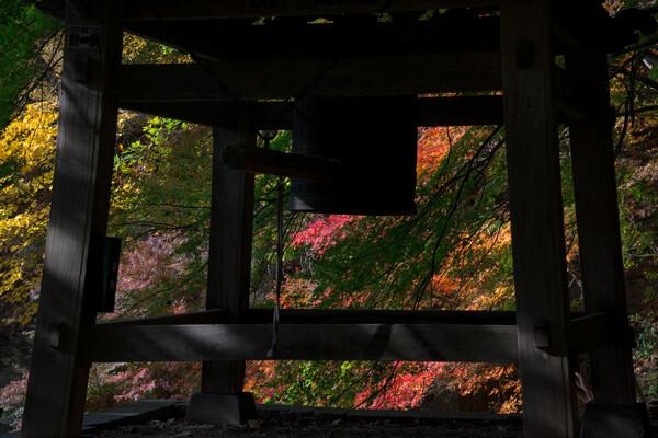 鐘突堂の秋