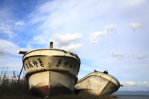 兄弟船 2020