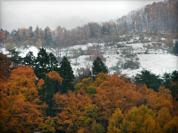 ベランダから見た山の秋冬