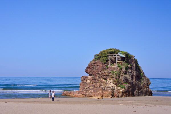 【フリー】稲作の浜