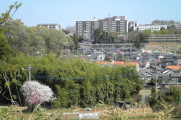 館町の風景 4月17日