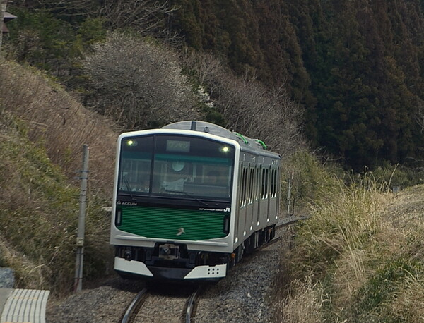架線の無い区間を走行する電車
