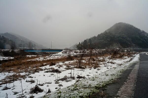 雪がチラチラ降っています。