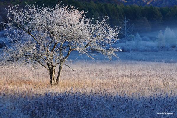 霜降の静寂
