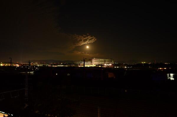 雨続き やっと今夜はお月さんが拝めました。