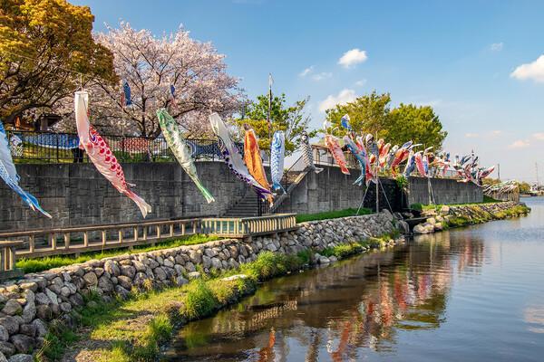 【花のある風景】春の佐屋川②