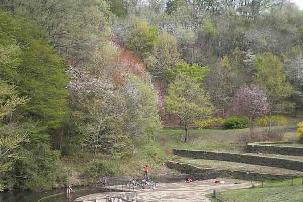 公園の池で遊ぶ子供たち