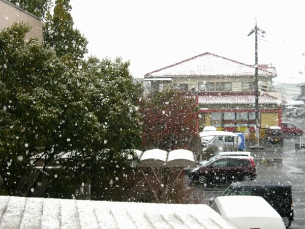 ようやく雪が