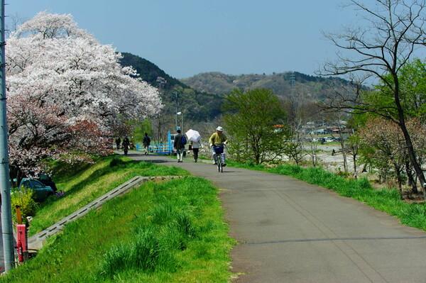 【緑】春の堤防