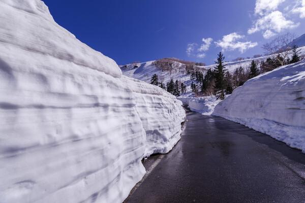 春山の残雪壁