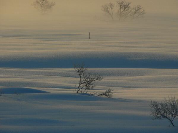 湖の朝から・・・