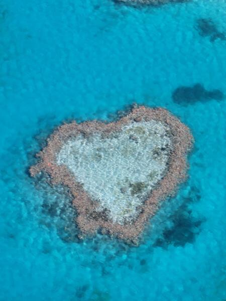ハート型の珊瑚礁、ハートリーフ