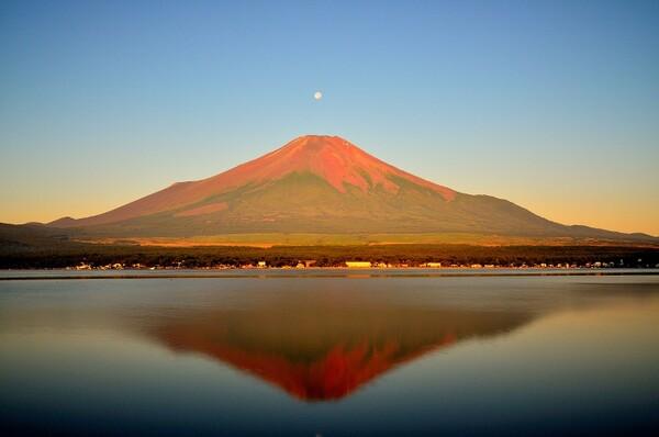 ちっちゃなパールと赤富士
