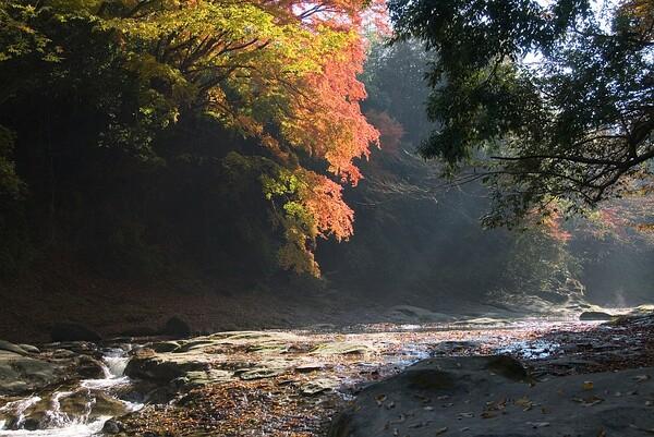 千葉県 養老渓谷1