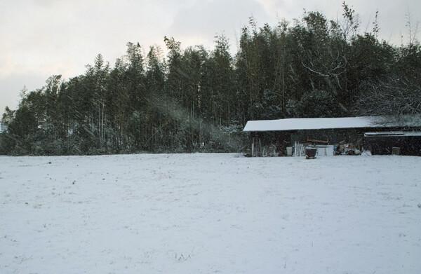 【刹那】 雪・はかなく消える美しさ