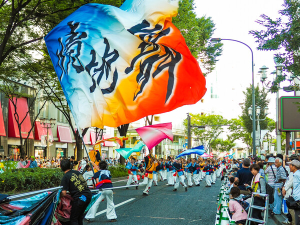 【MFP】 彩パレード