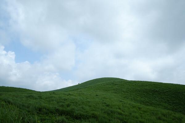 梅雨空の丘
