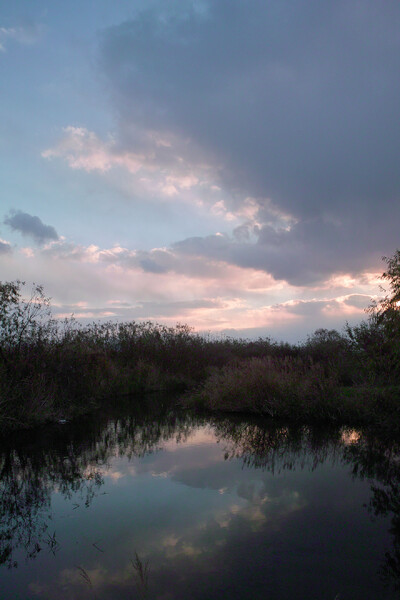 【雲】 今日の日没前