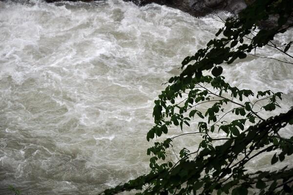 【生活の色】川の流れ