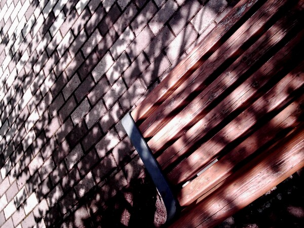 【光】木漏れ日