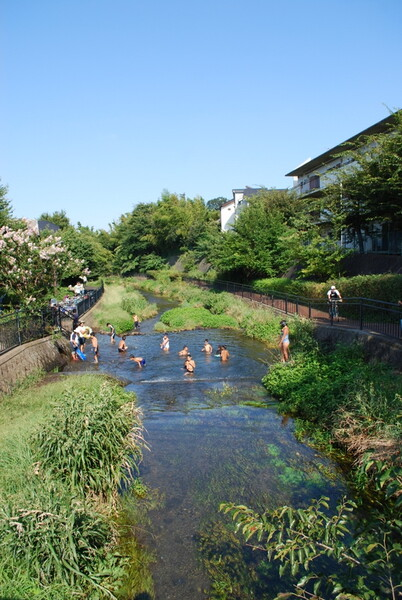 川遊びの風景