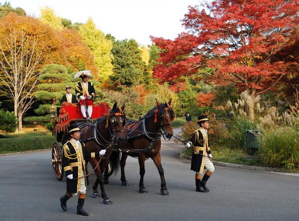 馬車行列と紅葉