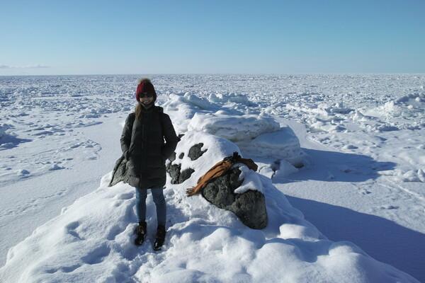 知床北岸の流氷