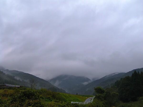 雨降りの朝!