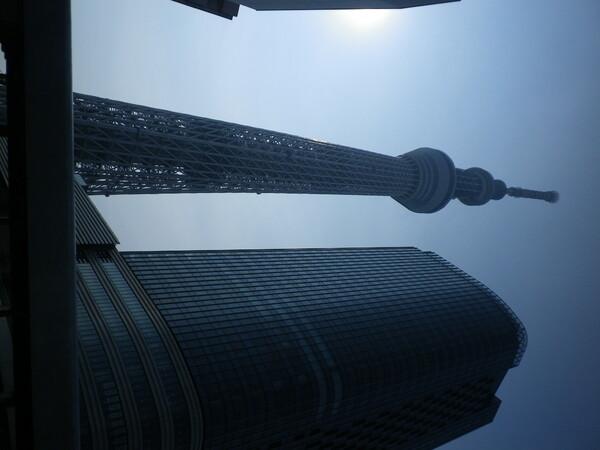 天突く巨塔