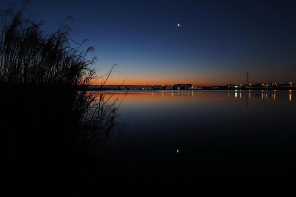 月、金星昇る