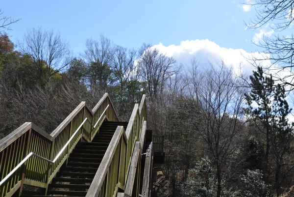 天空への階段