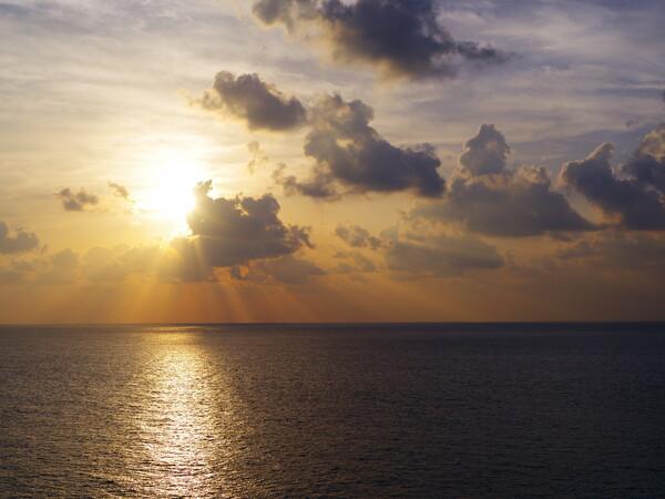 【花・空のある風景】日没前