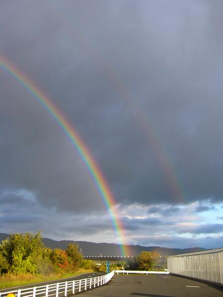 綺麗な虹!