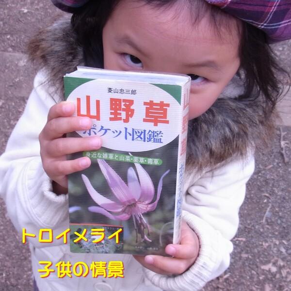 【この一曲】トロイメライ(子供の情景)