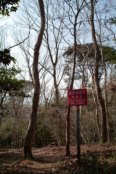 【赤】鳥獣保護区
