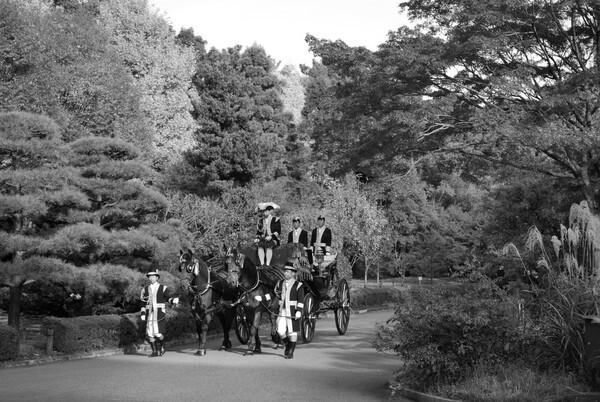 【道】馬車の走る風景