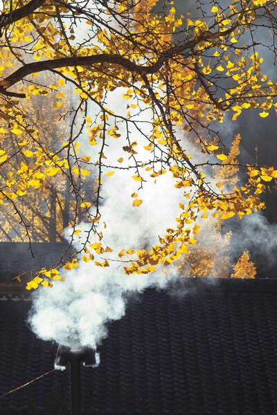 「ノスタルジー」 薪釜の煙