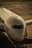 『ハードボイルドに』DELTA A350
