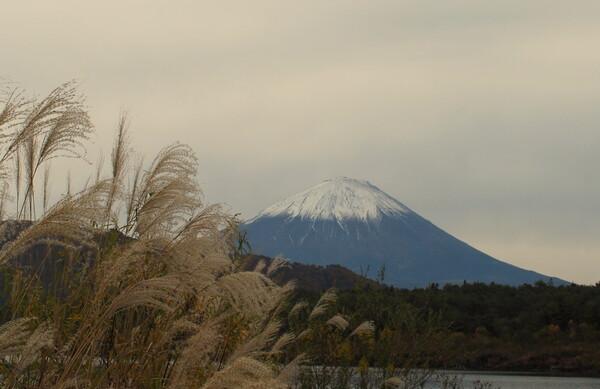 【秋】富士山3