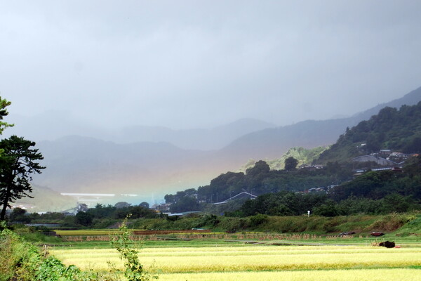 希望の虹が・・・