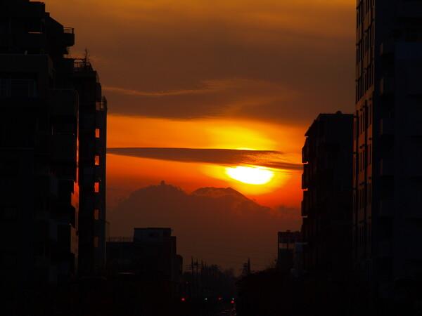 【逆光】落日