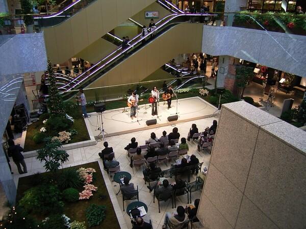 『木』木のある中庭コンサート