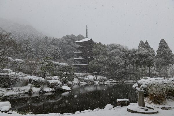 山口県瑠璃光寺五重塔